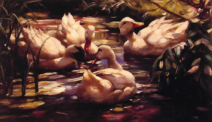 Alexander Koester Ducks in a Forest Pond