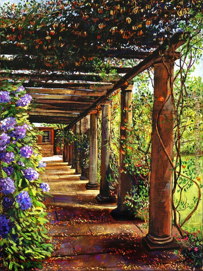 David Lloyd Glover Pergola Walkway