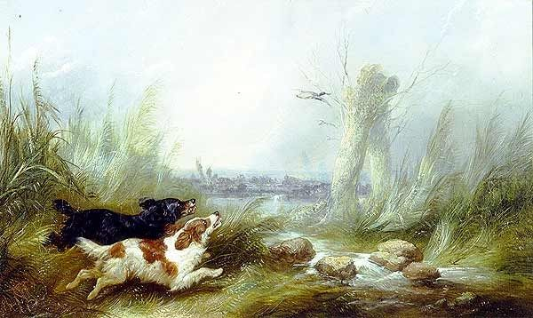 George Armfield Spaniels Putting Up a Mallard