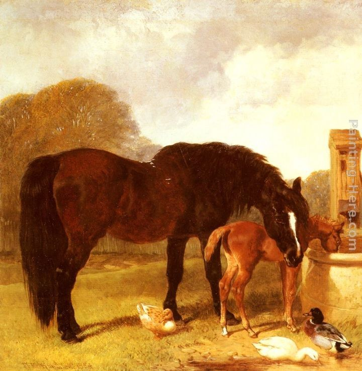 John Frederick Herring Snr Horse and Foal watering at a trough