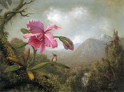 Martin Johnson Heade Orchid and Hummingbird near Mountain Waterfall
