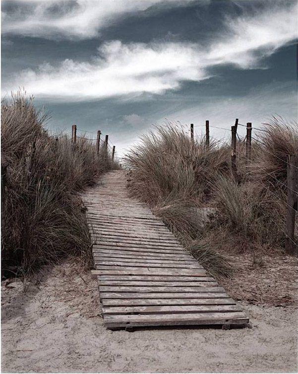 Unknown Artist The Pathway