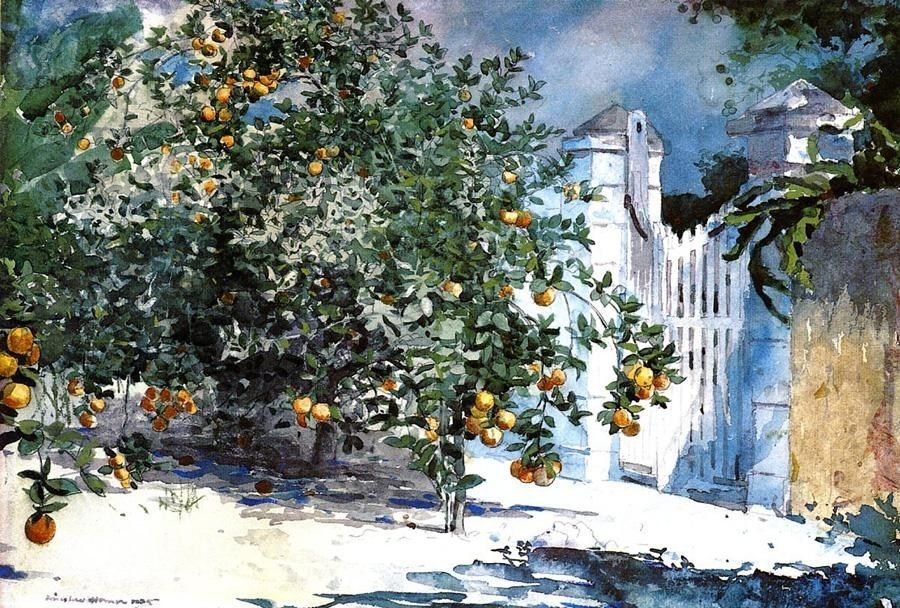 Winslow Homer Orange Tree Nassau