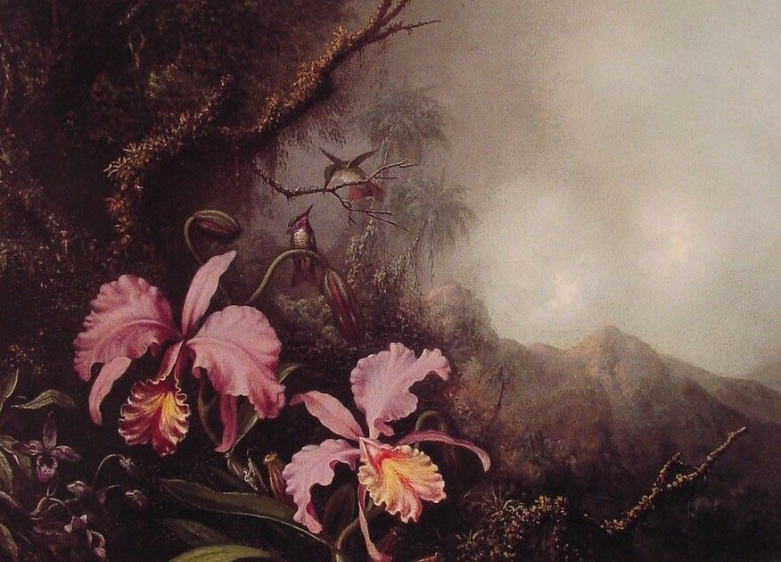 Martin Johnson Heade Two Orchids in a Mountain Landscape