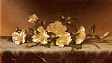 Martin Johnson Heade Cherokee Roses On A Light Gray Cloth painting
