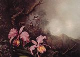 Martin Johnson Heade Two Orchids in a Mountain Landscape painting