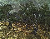 Vincent van Gogh The Olive Grove painting