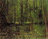 Vincent van Gogh Trees And Undergrowth painting